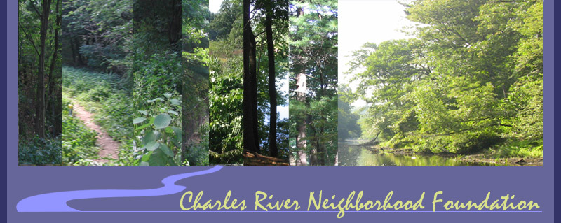 Charles River Neighborhood Foundation